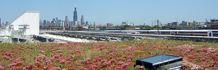 A view from the green roof of the Chicago Center for Green Technology, where WRD is headquartered