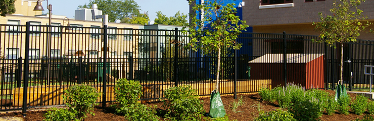 The newly planted sustainable landscape of the Aurora Early Learning Center, a WRD Environmental project