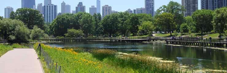 Naturalized shoreline at the Nature Boardwalk at Lincoln Park Zoo, a WRD Environmental project