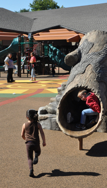 Children enjoy a slide resembling a hollow tree trunk at the Early Learning Center at Forest Elementary School.