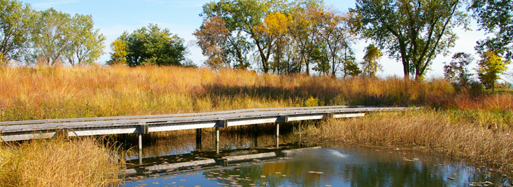 A boardwalk at the South Shore Bird Sanctuary, a WRD Environmental project