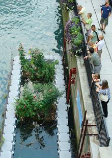 "The Chicago River ""Fish Hotel,"" connecting people to the river"