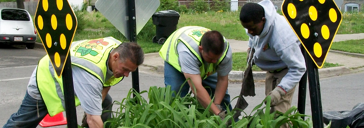 Trainees in Greencorps Chicago, a WRD Environmental project